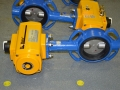 EL-O-MATIC F Series Pneumatic Actuator & Butterfly Valve