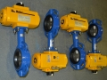 EL-O-MATIC F Series Pneumatic Actuator & Butterfly Valve 2