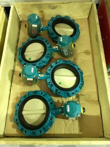 InterApp Despinia resilient seated butterfly valve technology