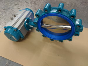 Resilient Seated butterfly valve, InterApps Desponia